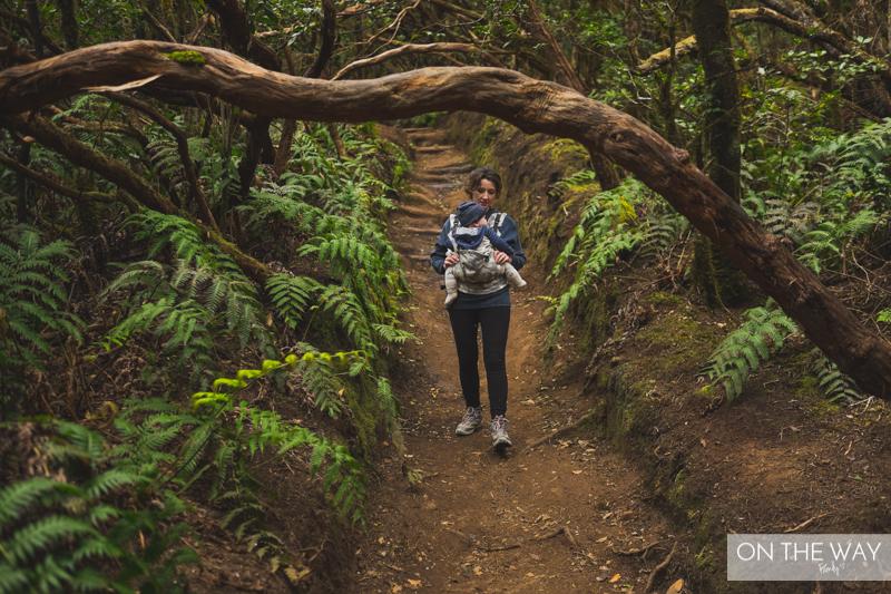 trekking Teneryfa
