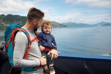 wellington to picton ferry