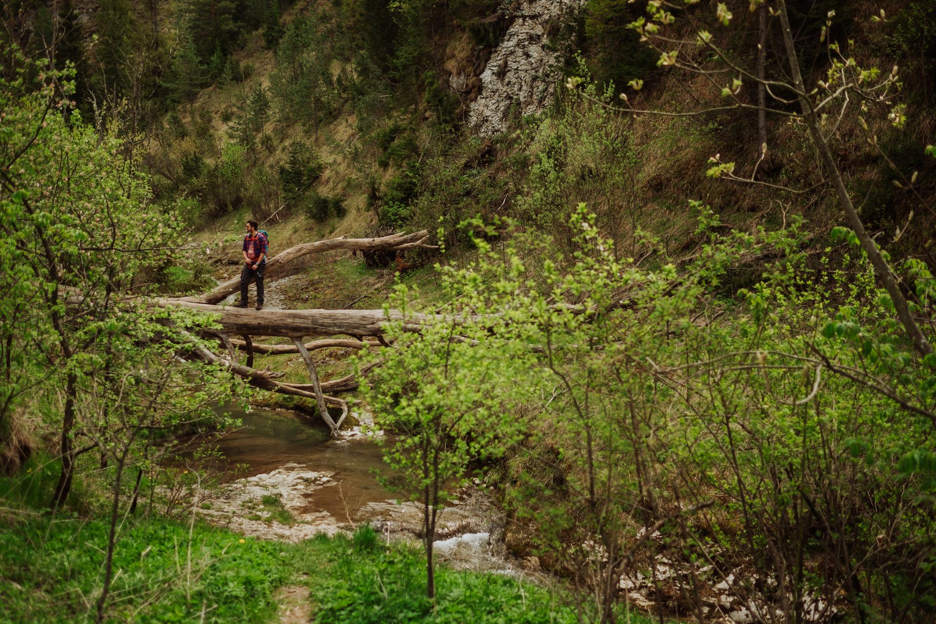 Rezerwat Biała Woda Pieniny